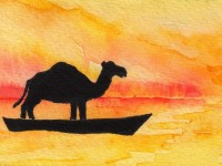 Life of Pi Series - Richard Parker played by an Arabian Camel