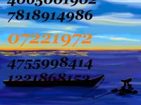 Life of Pi Series - Richard Parker played by the digits starting at the 14,014,624 position of Pi after the decimal point, 07221972, and  Pi played by Pi